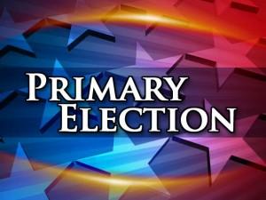 primaryelection
